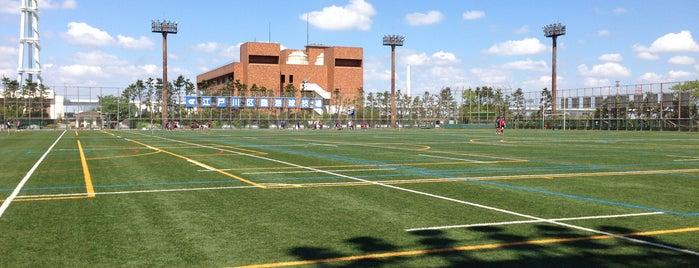 江戸川区臨海球技場 is one of football.