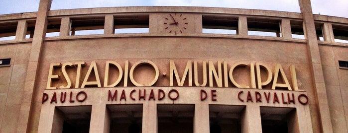 Estádio Municipal Paulo Machado de Carvalho (Pacaembu) is one of Must Do Trips.