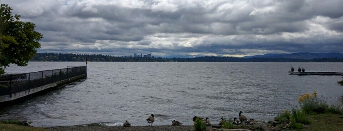 Howell Park is one of Seattle's 400+ Parks [Part 1].