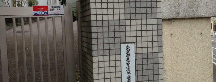 東京都立 広尾高等学校 is one of 都立学校.