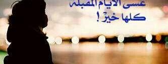 مجمع is one of alw3ad.