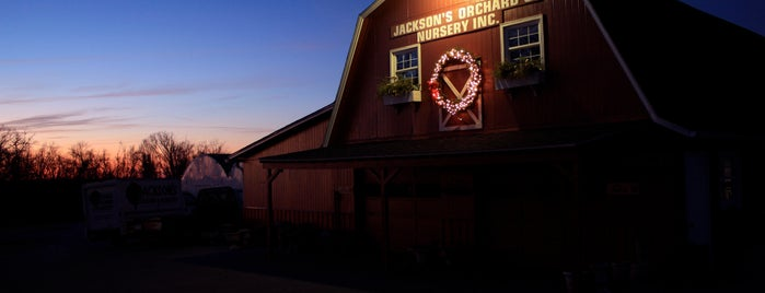 Jackson's Orchard & Nursery Inc is one of Bowling Green, Kentucky Attractions.