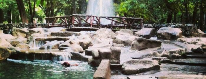 Parque México is one of Pequeños lugares para el corazón....