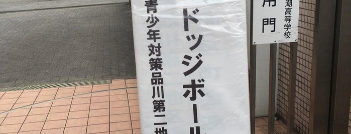 東京都立 八潮高等学校 is one of 都立学校.