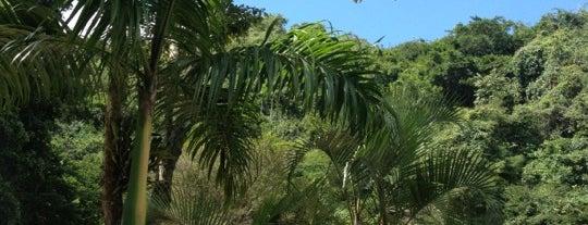 Cuevas del Indio is one of Plazas, Parques, Zoologicos Y Algo Mas.