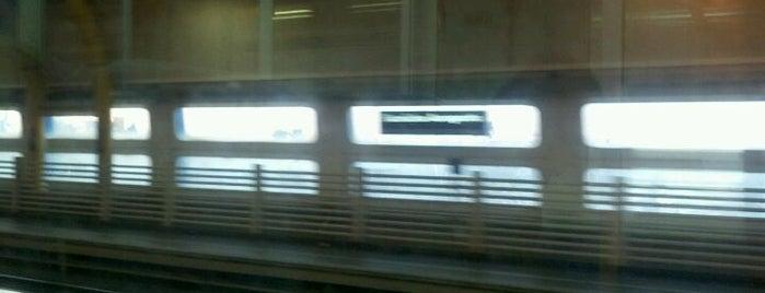 Stazione Fiumicino Aeroporto is one of Muoversi a Roma.