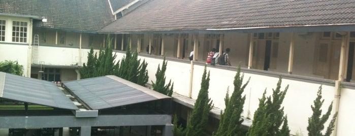Fakultas MIPA is one of UGM.