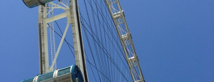 The Singapore Flyer is one of Singapore Life.