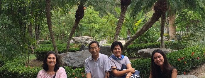 สวนพฤกษศาสตร์ภาคกลาง (พุแค) (Phu Kae Botanical Gardens) is one of Bkk - Lopburi Way.