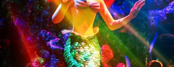 Under the Sea ~ Journey of the Little Mermaid is one of My Sunshine State <3.