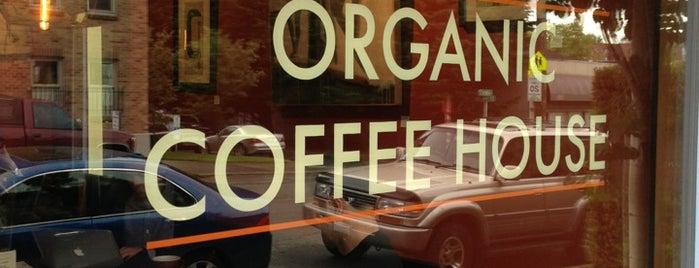 Non-Starbucks Coffee