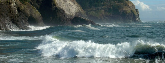 Cape Disappointment State Park is one of My Saved Places.