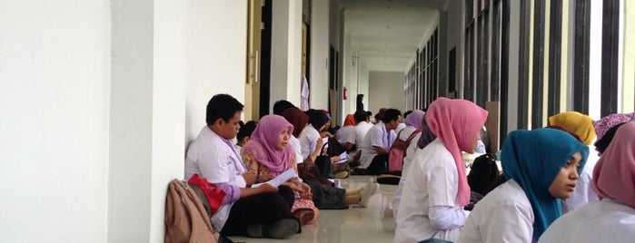 Rumah Sakit Pendidikan Universitas Tadulako is one of Universitas Tadulako Palu.