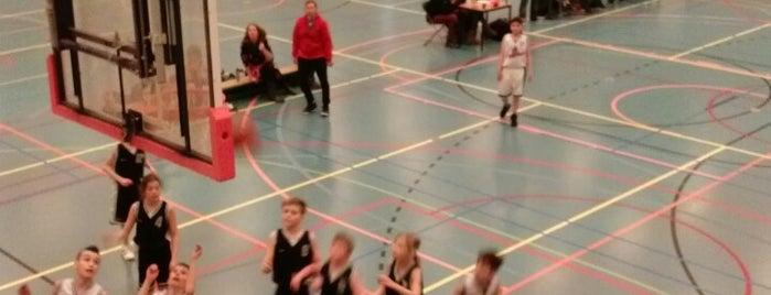 Deppenbroekhal is one of Sporthallen NBB Promotiedivisie 2011/2012.