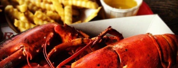 The Lobster Shack is one of Maine Lobster!.