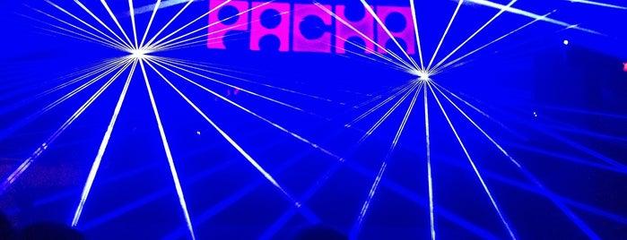 Pacha is one of Pacha.