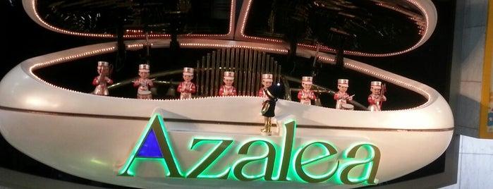 川崎地下街 アゼリア (Azalea) is one of 横浜・川崎のモール、百貨店.