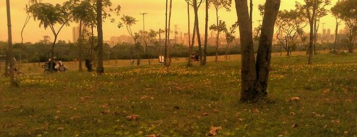 Parque Villa-Lobos is one of Best places in São Paulo, Brasil.