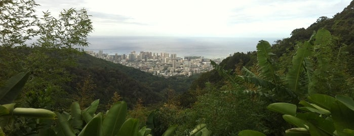 Tantalus Lookout is one of Emmanuel's tips.
