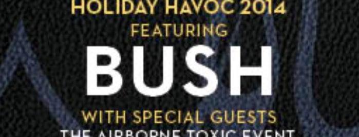Bush VIP: Las Vegas is one of Bush VIP.