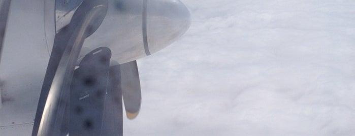 (SK) SAS - Scandinavian Airlines 177 is one of Airport Flights.