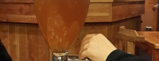 Bisonte Brew Beer is one of Pub's Temuco.