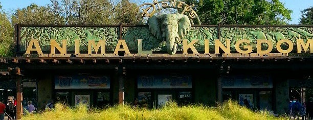 Disney's Animal Kingdom is one of Disney World.