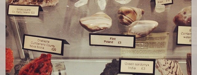 Mr Wood's Fossils is one of Best unusual UK shops - reader tips.