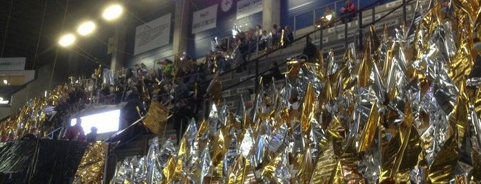 Kinnarps Arena is one of JYM Hockey Arenas TOP100.