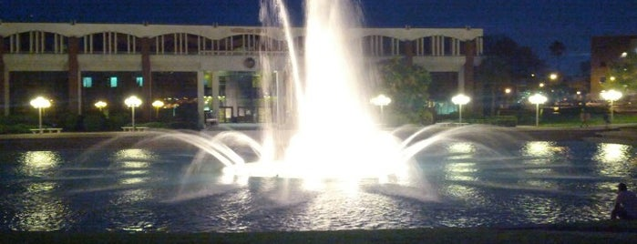 UCF Reflection Pond is one of All-time favorites in United States.