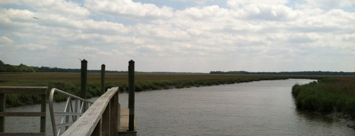 James Island CP Fishing Dock is one of Common Places to Be.