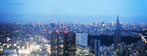 Park Hyatt Tokyo is one of 36 Hours In...Tokyo.