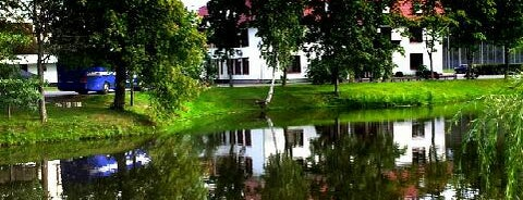 База ФК «Зенит» is one of Основной состав.