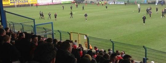 SC Eendracht Aalst is one of Jupiler Pro League and Belgacom League - 2013-2014.