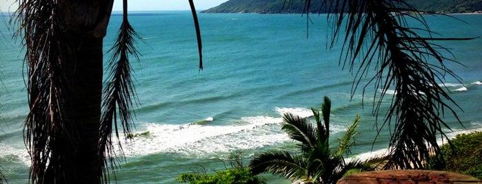 Praia da Armação is one of Floripa.