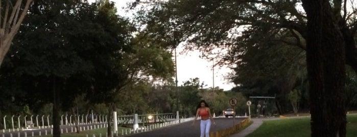Parque Estadual do Prosa is one of Campo Grande #4sqCities.