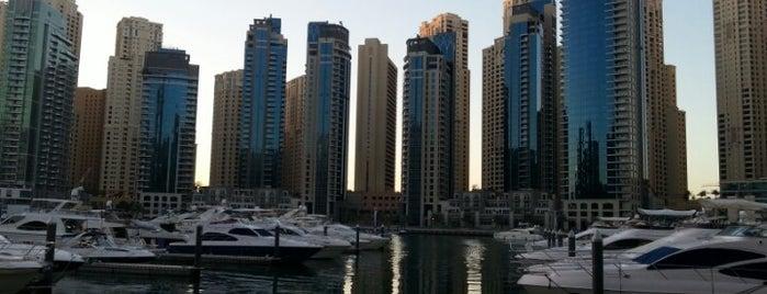 Dubai Marina is one of Best places in Dubai, United Arab Emirates.