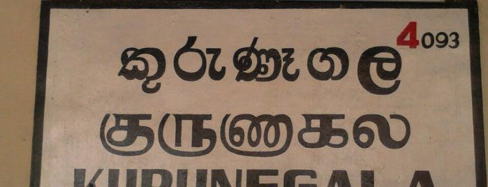 Kurunegala Railway Station is one of Railway Stations In Sri Lanka.