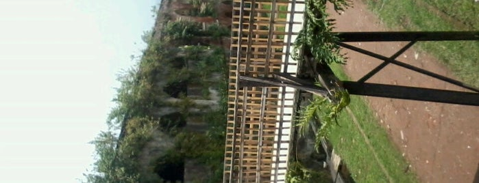 Must-visit Great Place in Ambarawa-Salatiga