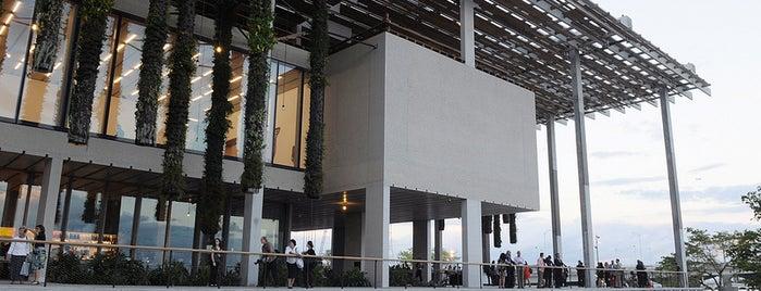 Pérez Art Museum Miami (PAMM) is one of My Sunshine State <3.