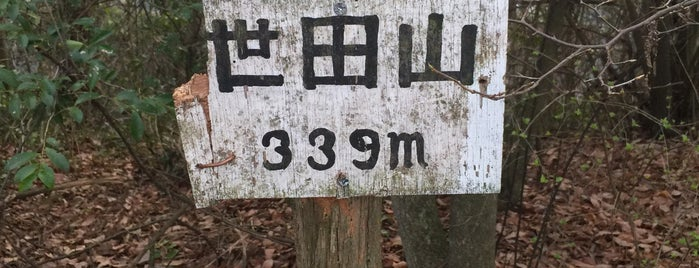 世田山 山頂 is one of 四国の山.