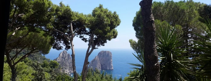 Il Geranio is one of Italy - Summer 2012.
