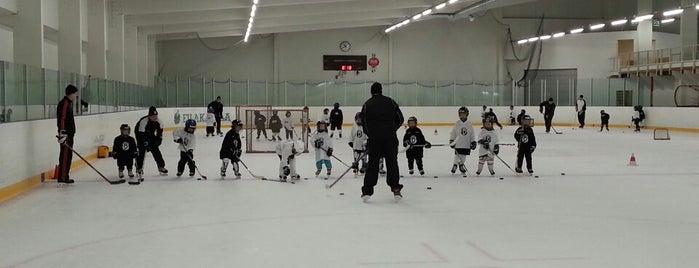 Matinkylän jäähalli is one of Junior icehockey arenas.
