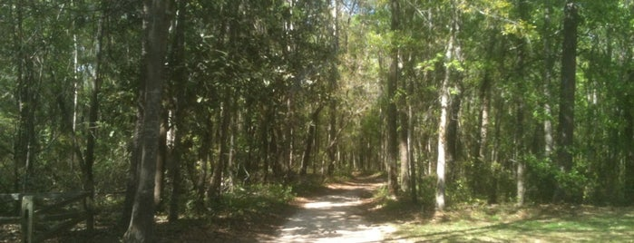 Lake Overstreet Multi Use Trails Meridian Entrance is one of Get out and enjoy the fresh air in Tallahassee.
