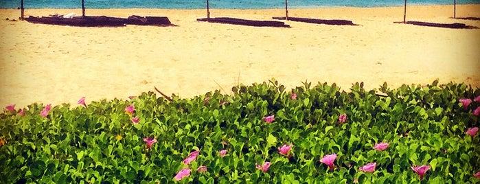 Pansea Beach Phuket is one of Origin Destiny.