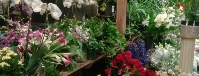 Brattle Square Florist is one of Potential Vendors.
