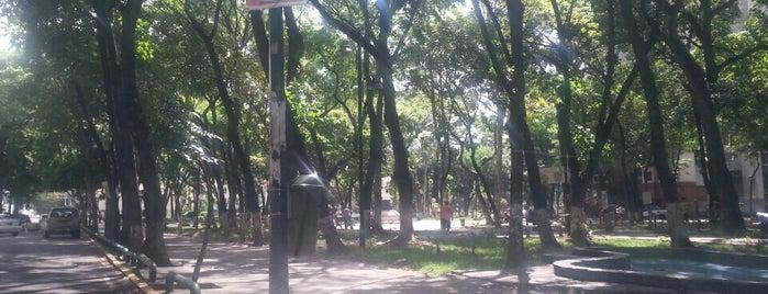 Plaza Madariaga is one of Plazas, Parques, Zoologicos Y Algo Mas.