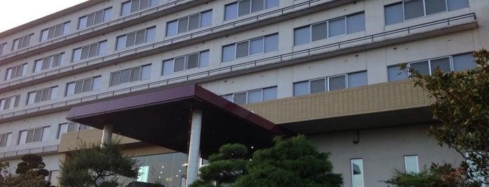 筑波温泉ホテル is one of Ibaraki (tentative).