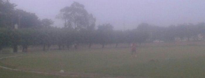 Unidad Deportiva is one of Fin de Semana.
