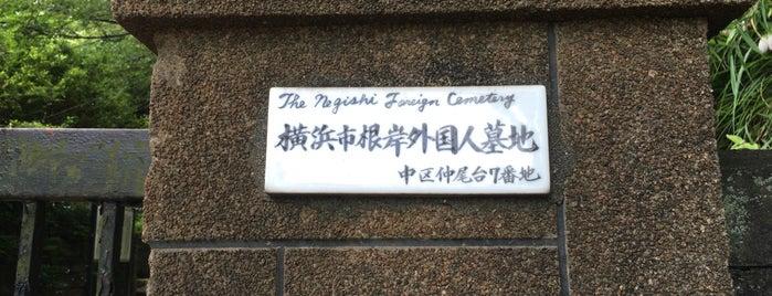 根岸外国人墓地 is one of 歴史(明治~).